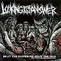 Looking for an Answer- Split The Suffereing Split the Pain CD
