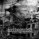 "Extinguish- Downfall of Civilization 7""   ~~ CLEAR VINYL"